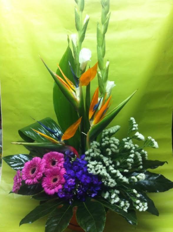 משלוחי סידורי פרחים