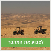 לצבוע את המדבר